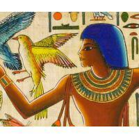 Zoom Sur Une Partie Du Papyrus - 36Ko