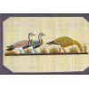 Carte Papyrus :  Les Oies De Mêidoum