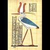 Papyrus Le Phoenix
