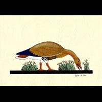 Peinture Sur Papier Type Canson : Oies De Meidoum - 28Ko